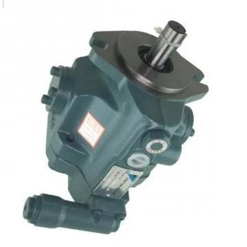 Daikin DS-12P Single Stage Vane Pump