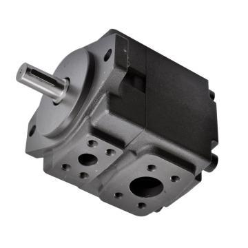 Vickers 4525V60A21-1DD22R Double Vane Pump