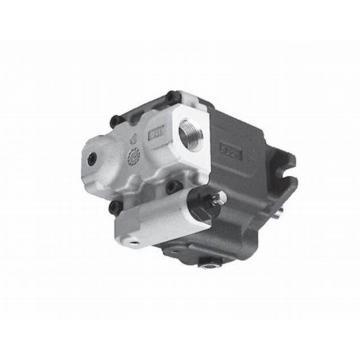 Yuken PV2R13-6-116-F-RAAA-41 Double Vane Pumps