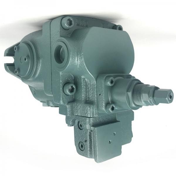 Daikin V15C23RHX-95 Piston Pump #1 image
