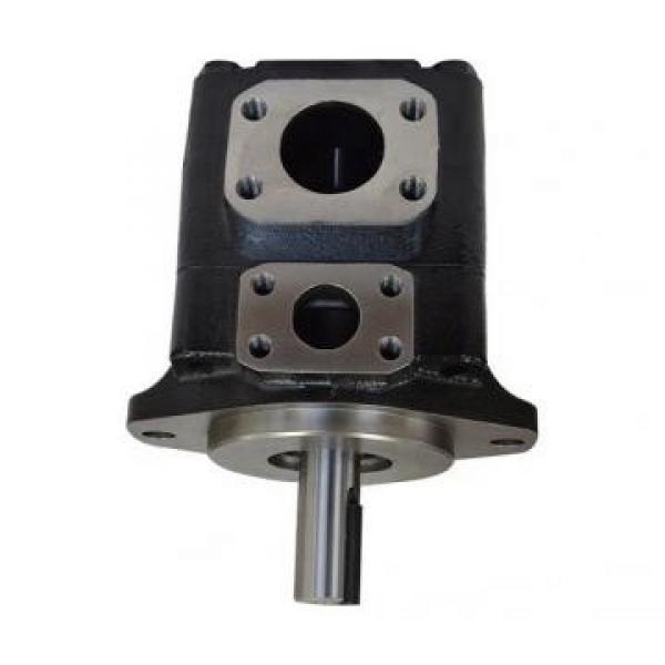 Denison PV15-1R5D-F02NP Variable Displacement Piston Pump #1 image
