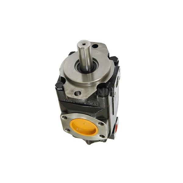 Denison PV29-2R1B-F00 Variable Displacement Piston Pump #3 image
