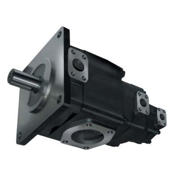 Denison PV10-2R1B-F00 Variable Displacement Piston Pump #1 image