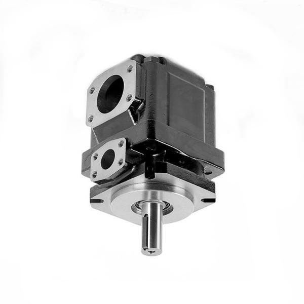 Denison PV10-2R1B-F00 Variable Displacement Piston Pump #2 image