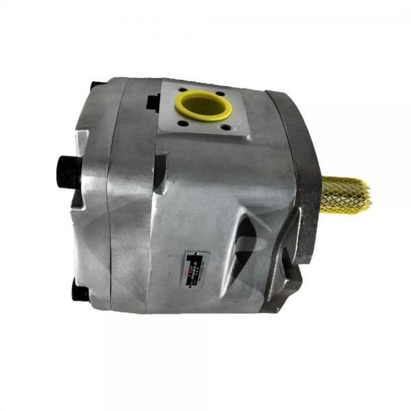 NACHI IPH-66B-80-125-11 Double IP Pump #1 image