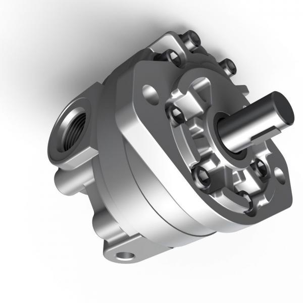 Parker PV016R1K1T1VFWS Axial Piston Pump #2 image