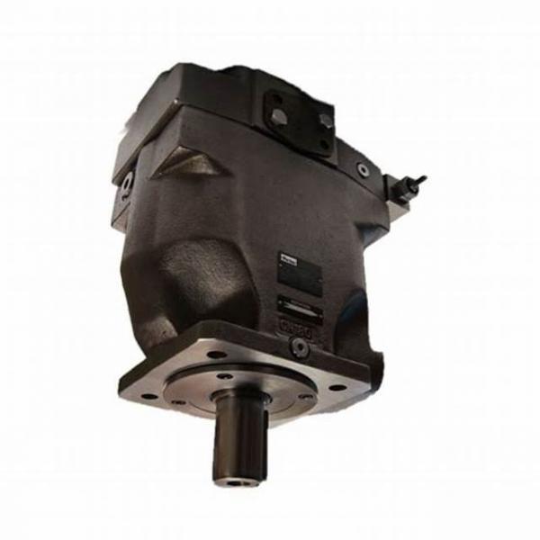 Parker PV032R1K1B1NFDS Axial Piston Pump #1 image