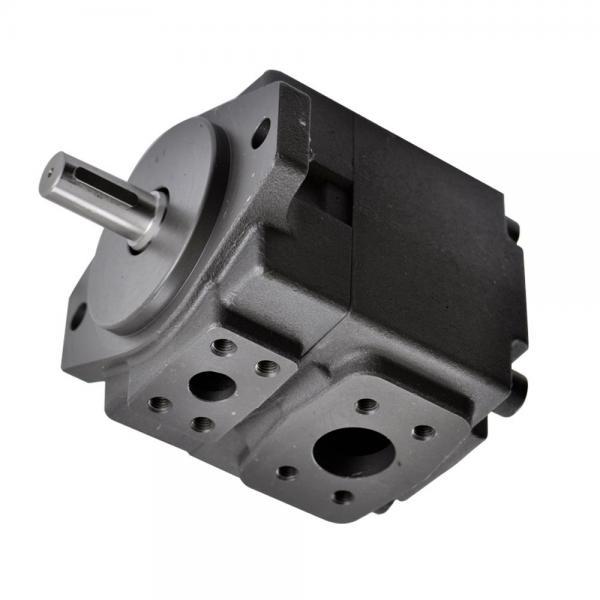 Vickers 2525V-17A10-1AA22L Double Vane Pump #1 image