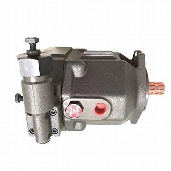 Yuken PV2R14-23-184-F-RAAA-31 Double Vane Pumps #1 image
