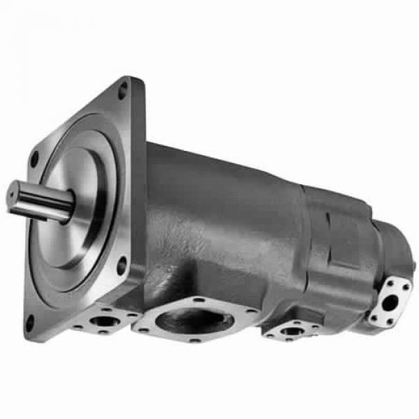 Yuken PV2R34-66-184-F-RAAA-31 Double Vane Pumps #3 image
