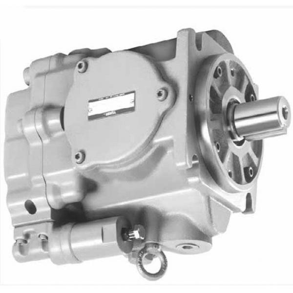 Yuken PV2R14-23-184-F-RAAA-31 Double Vane Pumps #2 image